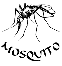 editions mosquito